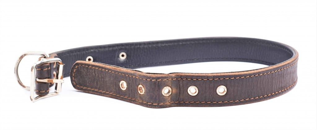 Brown Leather Dog Collar - Liberty Leather Goods