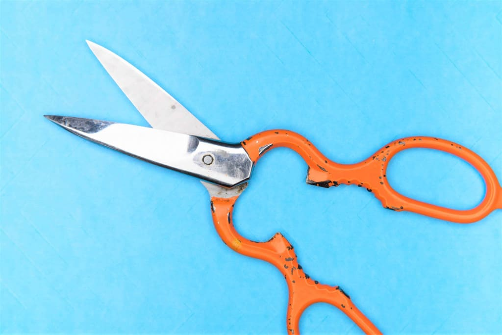 Leather Scissors - Liberty Leather Goods