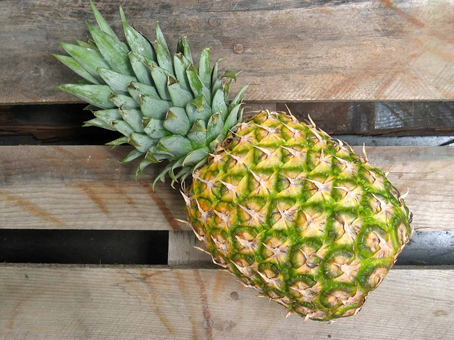 Pineapple Fruit - Liberty Leather Goods
